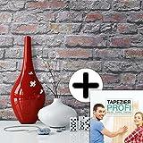 Steintapete in Grau Rot Braun | schöne edle Tapete im Design einer Steinmauer | moderne 3D Optik für Wohnzimmer, Schlafzimmer, Flur oder Küche | inklusive der Newroom-Tapezier-Profi-Broschüre, mit allen Hilfen, Tricks und Tipps, die Sie zum perfekten Tapezieren brauchen!