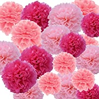 Sicai 27 Pcs Tissue Paper Pom Poms Hanging Tissue Paper Pom for Wedding Birthday Party Decoration (Pink, Light Pink and Rose)