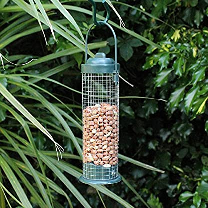 Kingfisher BF027 Green Standard Bird Nut Feeder, Transparent, 7.6x8.5x28 cm 3