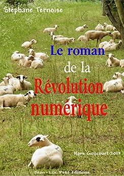 Le roman de la révolution numérique: Hors Goncourt par [Ternoise, Stéphane]