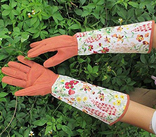 kc-leder-palm-handschuh-garten-genie-handschuhe-kinderzimmer-pflanzen-handschuhe
