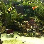 Broadroot Fish Tank Landscape Sailing Boat Shipwreck Shaped Ornament Aquarium Fish Tank Pirate Decor 15
