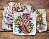 Best Diccionarios médicos - Anatomy Diccionario médico posavasos, set de regalo para Review