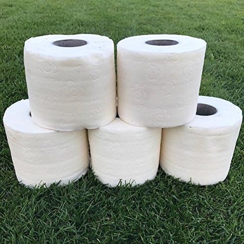 5 x Wachsrollen Fackelrollen für Gartenfackel Fackeln Partyfackel Eventfackel Gartenfeuer Feuerfackel Toilettenpapier Fackel für draußen (5 Wachs)