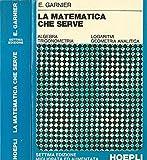 La matematica che serve. Algebra, trigonometria, logaritmi, geometria analitica.