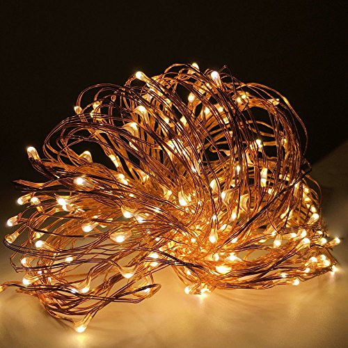 Preisvergleich Produktbild XGUO 100 LED 10 Meter Lichterkette Wasserfest String DC 12V EU Stecker Beleuchtung Ambiente für Außen Landschaft, Terrasse, Garten, Schlafzimmer, Camping, Weihnachtsfest, Hochzeit--Warmweiß