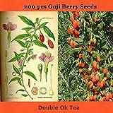 AGROBITS bonsai de China 200pcs de calidad superior grande estupendo semillas de goji bayas de goji goji semillas semilla del goji