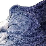 SCHÖNER LEBEN. Mikrofaserdecke Kuscheldecke Teddyflausch Ivar Farbverlauf Dip Dye blau weiß 130x160cm
