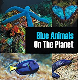 Blue Animals On The Planet Animal Encyclopedia For Kids Colorful Animals On The Planet Book 1