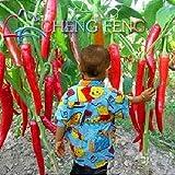150pcs 16 Farbe Mixed Gelb Rot Grün Weiß Mix süße Glocke Hot Pepper Samen Gemüse Paprika Seed * Home Garten Chilli Pflanzen