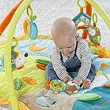 Fehn 071559 3-D-Activity-Decke Sleeping Forest – Spielbogen mit 5 abnehmbaren Spielzeugen für Babys Spiel & Spaß von Geburt an – Maße: 80x105cm für Fehn 071559 3-D-Activity-Decke Sleeping Forest – Spielbogen mit 5 abnehmbaren Spielzeugen für Babys Spiel & Spaß von Geburt an – Maße: 80x105cm