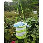 sgerste 14 x 15cm/30 x 35cm praying mantis/stick insect/butterfly/cylinder style pop up cage green - 14x15cm SGerste 14 x 15cm/30 x 35cm Praying mantis/Stick Insect/butterfly/Cylinder Style Pop Up Cage Green – 14x15cm 61bSQKnklsL