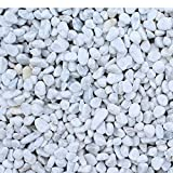 Marmorkies Carrara Weiss 25/40 mm (25 kg Sack)