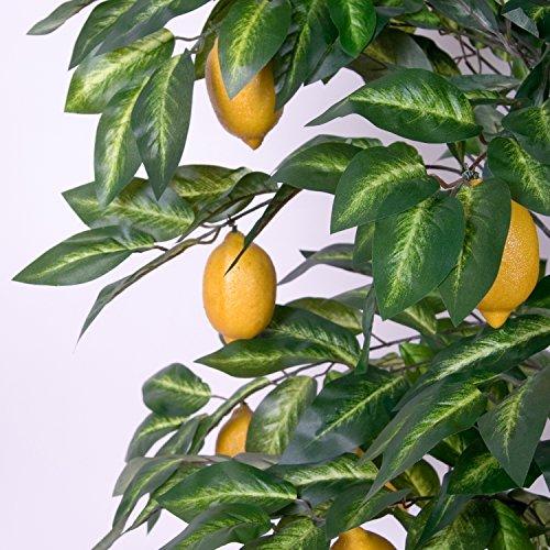 Zitronenbaum Kunstpflanze mit Echtholzstamm und Zitronen Kunstbaum - 184 cm groß - 2