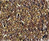 Gravier décoratif 20 mm 800 kg
