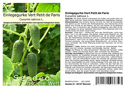 Seedeo® Einlegegurke Vert Petit de Paris (Cucumis sativus L.) ca.30 Samen BIO (Tomaten Petite)