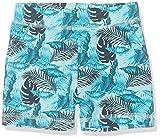 NAME IT Baby-Jungen Nbmjeson Shorts, Mehrfarbig (Clearwater), (Herstellergröße: 74)