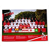 1. FC Köln Team Plakat / Poster / Mannschaftsposter 61 x 91 cm - plus gratis Aufkleber forever Köln