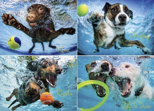 Underwater Dogs 2 1000-Piece Puzzle - Jig Saw Hund Puzzle