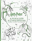 HARRY POTTER-ANIMALES FANTÁSTICOS LIBRO PARA COLOREAR