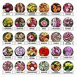 #7: Kraft Seeds 30 Varieties of Flower Seeds Heirloom Seed For Your Garden Beautiful Bloom This Season