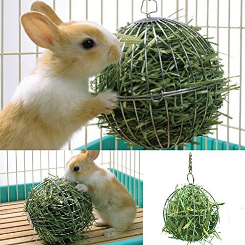 UEETEK Sfera porta erba per coniglio da appendere a diametro di 8cm in acciaio inossidabile
