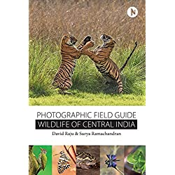 Wildlife of Central India: Photographic Field Guide