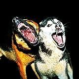 Microsoft Xbox Case Skin Sticker aus Vinyl-Folie Aufkleber Bellende Hunde Hund Wölfe