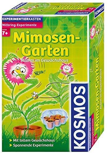 Mitbringexperiment Mimosen-Garte by KOSMOS