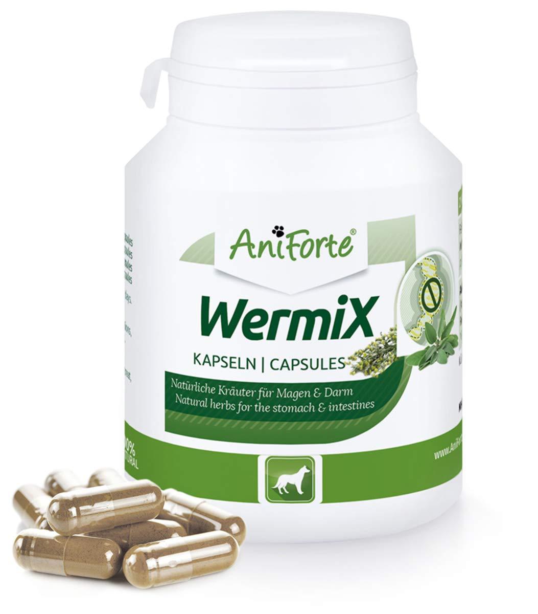 AniForte WermiX encapsular para perros 100 – producto natural para antes, durante y después de la infestación de gusanos, el ajenjo y las hierbas naturales ayudan al estómago y el intestino