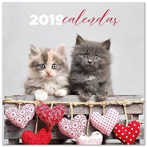 Grupo Erik Editores CP19013 - Calendario 2019 Chantrenne Cat, 30 x 30 cm