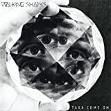 Songtexte von Walking Shapes - Taka Come On