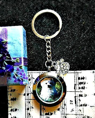 Pérdida de mascota memoria guardapelo llavero - cabello o cenizas urna perro muerte tributo relicario Regalo de condolencia amuleto personalizado medallón