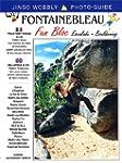 Fun Bloc: Fontainebleau Bloc-Bouldering.
