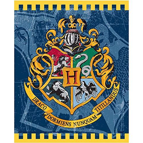 Articoli per feste a tema Harry Potter
