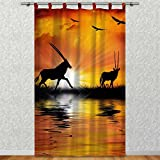Clever-Kauf-24 Vorhang Gardine für Das Kinderzimmer Afrika Antilopen BxH 145 x 245 cm | Sichtschutz | Lichtdurchlässig | Schlaufenschal Nicht Nur für Großwildjäger