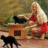 2-81-5 Ovale Katzenhöhle aus Weide von GalaDis. Mit zwei Kissen. Ein Katzenkorb für Ihre Katze zum Ruhen und Spielen. (Wendekissen)) - 2