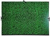 Exacompta 532800E - Carpeta de dibujo annonay con cintas, 52 x 72 cm, verde