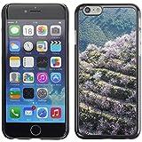 """Print Motif Coque de protection Case Cover // F00029088 Valle de almendros en flor // Apple iPhone 6 6S 6G PLUS 5.5"""""""