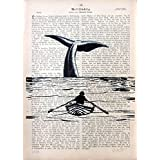 MOBY DICK 21