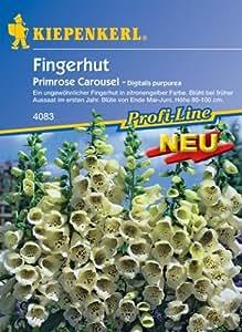 Fingerhut Primrose Carousel