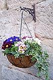 Blumenampel Pflanzampel Hanging Basket Metall inkl. Einlage Kokoseinlage EE (Ø 30 cm)