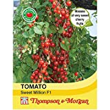 Thompson & ‿Morgan - Légumes - Tomate Sweet Million F1 Hybrid - 6 graines