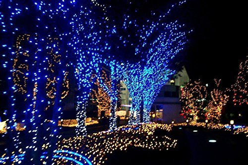 17m 55.8ft 100 LED Solar Powered outdoor christmas lights ,christmas tree lights,solar garden lights,outside String Light ,Holiday Fairy Lights for Outdoor Gardens Patio Lawn Porch, Gate Yard Homes Christmas Parties, Weddings Xmas Easter Festivals (Blue)