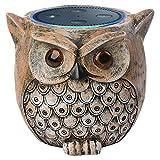 ANTS Support de baffle pour Amazon Echo Dot (2ème ou 1ère génération). Statue fabriquée par Alexa Echo Dots Owl Guard Station (marron)