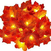 Guirlande d'automne, Ainkedin Decoration automne, 20 Guirlandes lumineuses, Gugirlande de feuilles d'automne, Decoration halloween noel, Décoration de Thanksgiving, Decoration murale