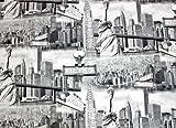 Dekostoff, Baumwollstoff, Meterware ab 0,5 m, USA-New York