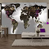 murando - Fototapete 250x175 cm - Vlies Tapete - Moderne Wanddeko - Design Tapete - Wandtapete - Wand Dekoration - Weltkarte Reise Kontinent k-A-0040-a-d