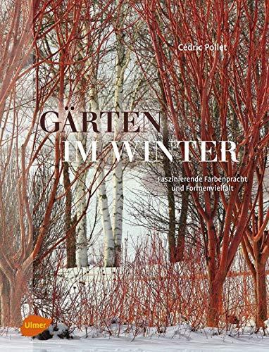 Gärten im Winter: Faszinierende Farbenpracht und Formenvielfalt