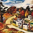 Into the Great Wide Open (1lp) [Vinyl LP]